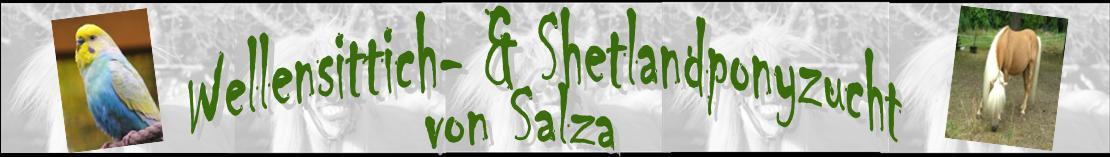 Wellensittich- & Shetlandponyzucht von Salza